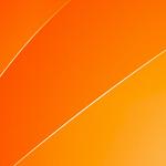 Bison App Test Erfahrung